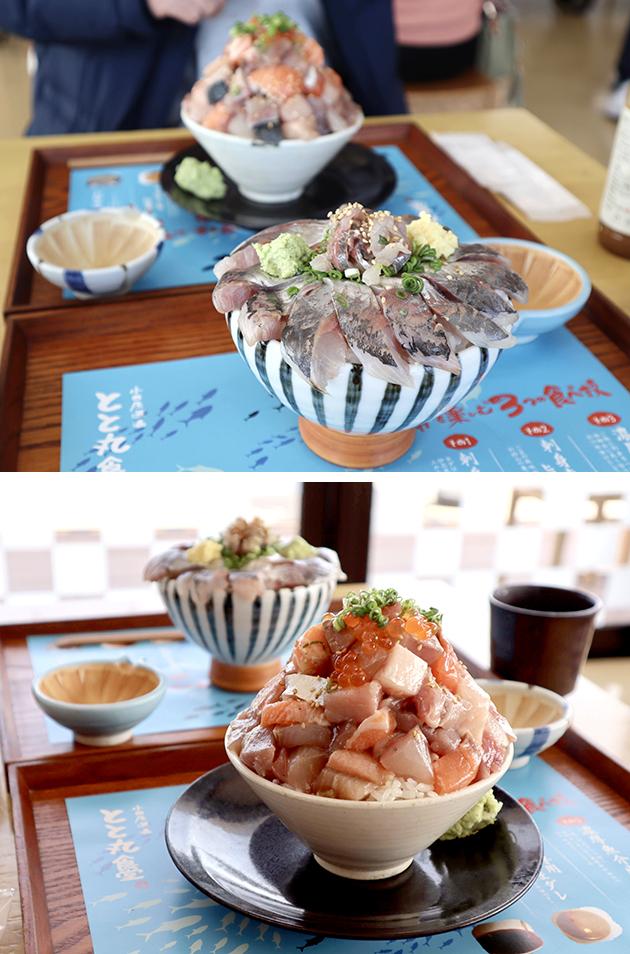 小田原漁港とと丸食堂の丼