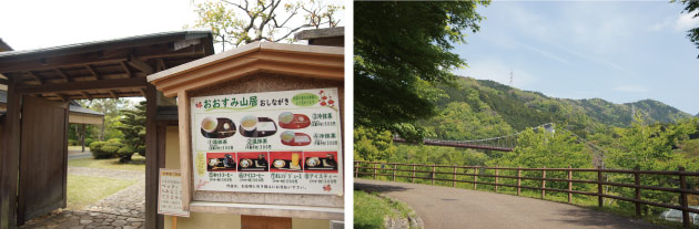 初夏の秦野戸川公園