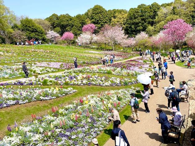 ガーデンネックレス横浜2021 里山ガーデン