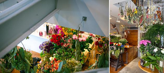花Lab花たち