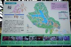 mitsuike20190321-011