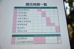 mitsuike20190321-012