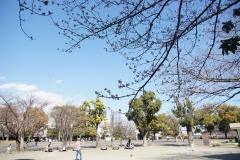 tanmachi20190324-01
