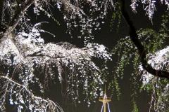 yamasita20190327-04