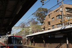 sachigaya190324-010