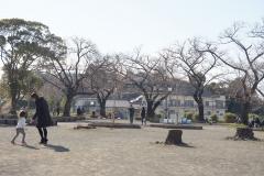 sachigaya190324-04