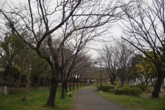 sinnyoko190323-01