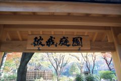 横浜公園「彼我庭園」