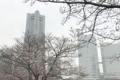 kisyamichi20190326-01