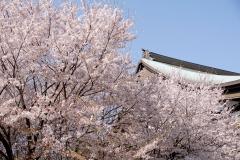 soujiji21080331-01