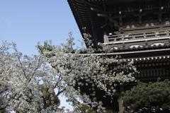 soujiji20190403-02