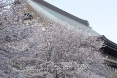 soujiji20190403-05