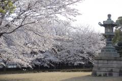 soujiji20190403-07