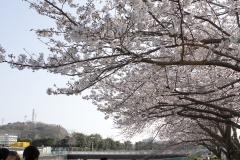 fujisawa20190330-01