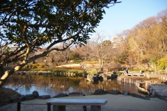 池越しの園内