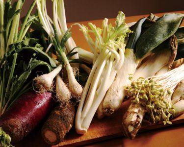てんこ盛りの新鮮な野菜