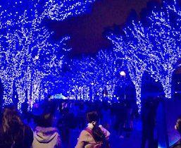 渋谷のイルミネーション 青の洞窟