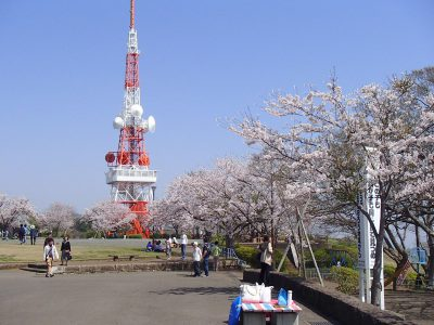 湘南平 高麗山公園