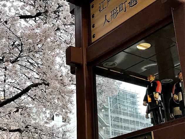 日本橋 人形町の桜