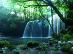 七里ガ浜 顕証寺 佛立大学講座 佛教の源流をたずねて