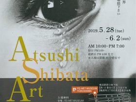 Atsushi Shibata Art-solo exhibition