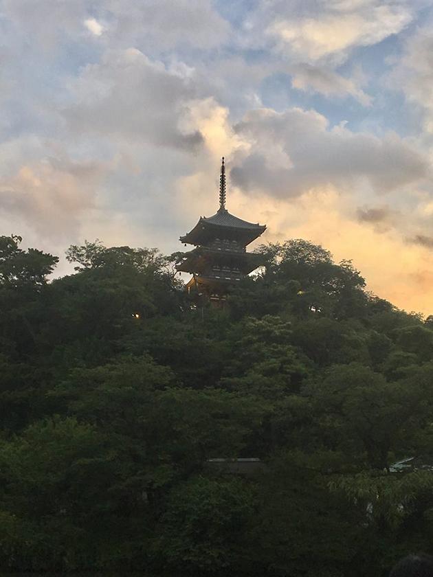 「三溪園」 蛍の夕べ