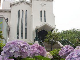 明治5年に設立された日本で最初のプロテスタント教会。横浜海岸教会のあじさい。
