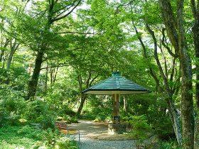 四季折々の自然が楽しめる岡田美術館の庭園