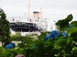 山下公園 氷川丸と紫陽花