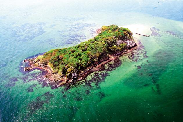 上空から見た猿島