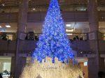 横浜ランドマークタワー クリスマスツリー2019