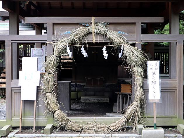 鎌倉宮 茅の輪