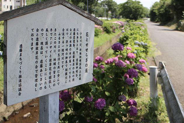 花とせせらぎの道案内看板
