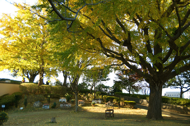 紅葉が美しい山手イタリア山庭園